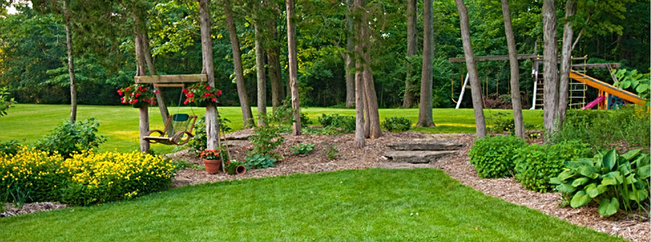 Lawn Care Springfield Mo Landscaping Springfield Mo